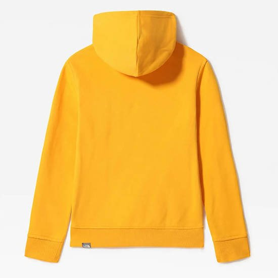 The North Face Youth Drew Peak Po Hoodie NF0A33H456P